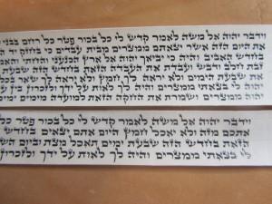 Tefillin Parshios For Nossi Tefillin Series written on thin klaf. Traub t.