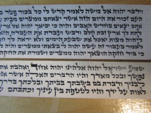 Tefillin Parshios Rabbi Holtzberg