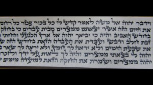 Sfaradi Tefillin Parshios Written By Rabbi Faviad T.