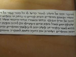 IMG_0871 David Pearl's IDF issue parshios
